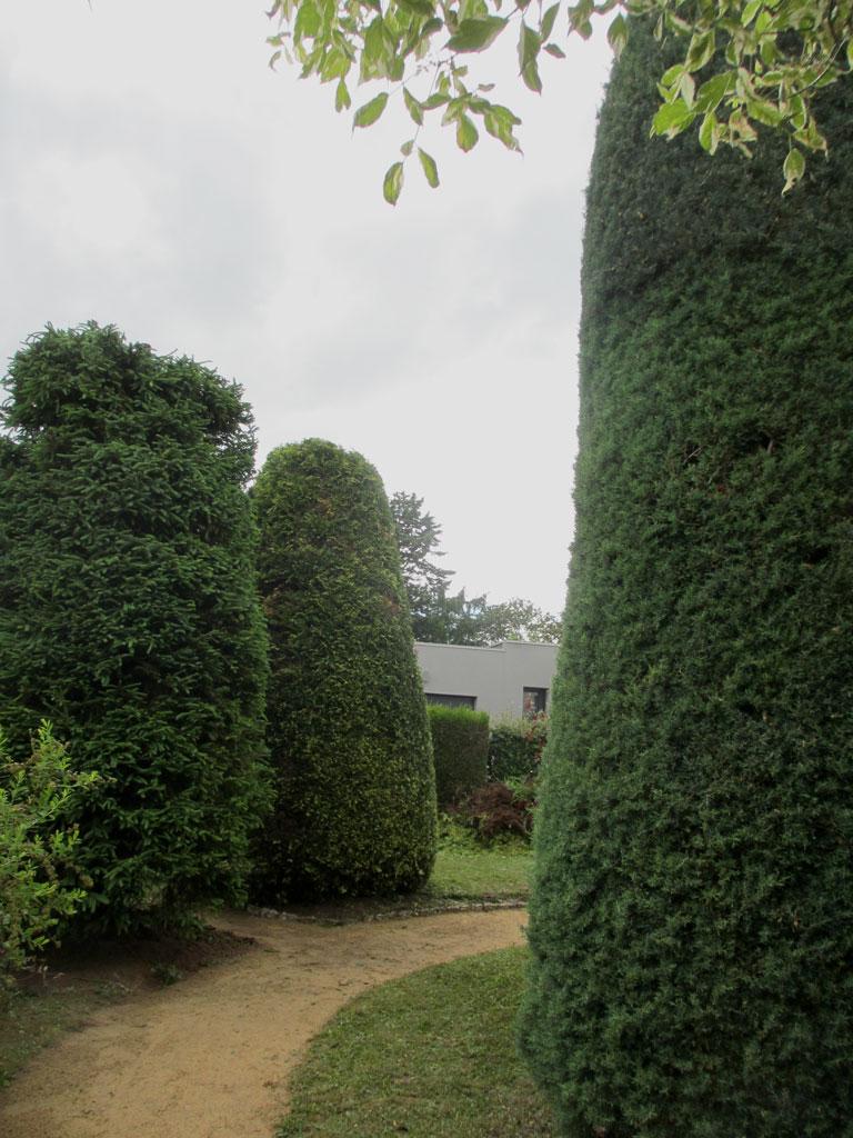Beaux arbres entretien de jardin for Arbre sans entretien